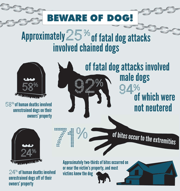 Dog Bite and Dog Attack Statistics
